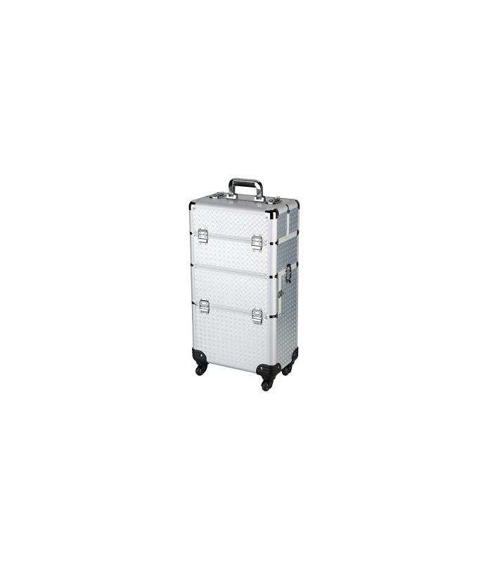valise professionele beauté 2 en 1 argent