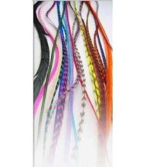 hair plume